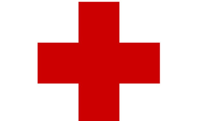 Red Cross volunteers killed in Central African Republic