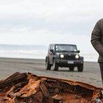 Tour operators want end to 'horrific' Muriwai Beach crashes