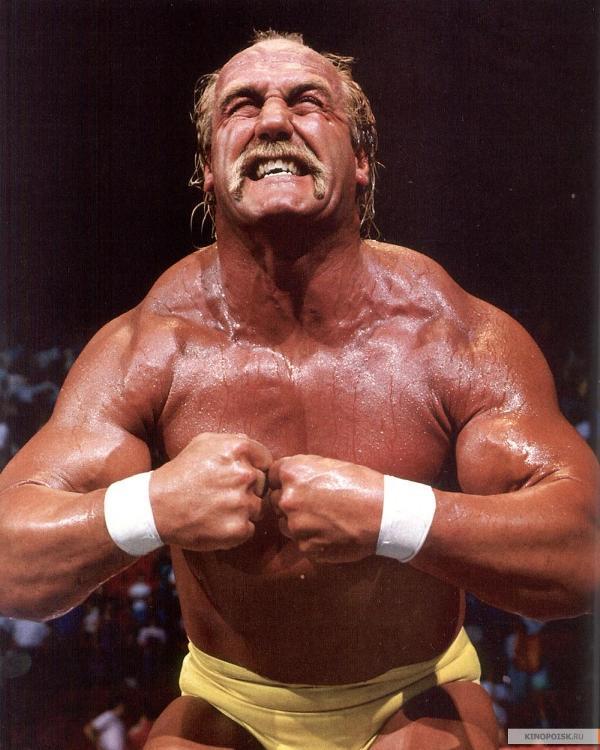 Happy birthday Hulk hogan I hope you have a glorious day sir.