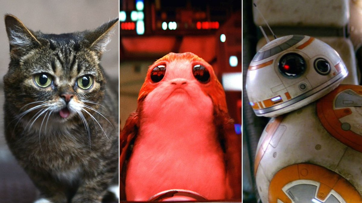 The Newest Star Wars Creature Is Cute — But Is It As Cute As These Other Cute Things?