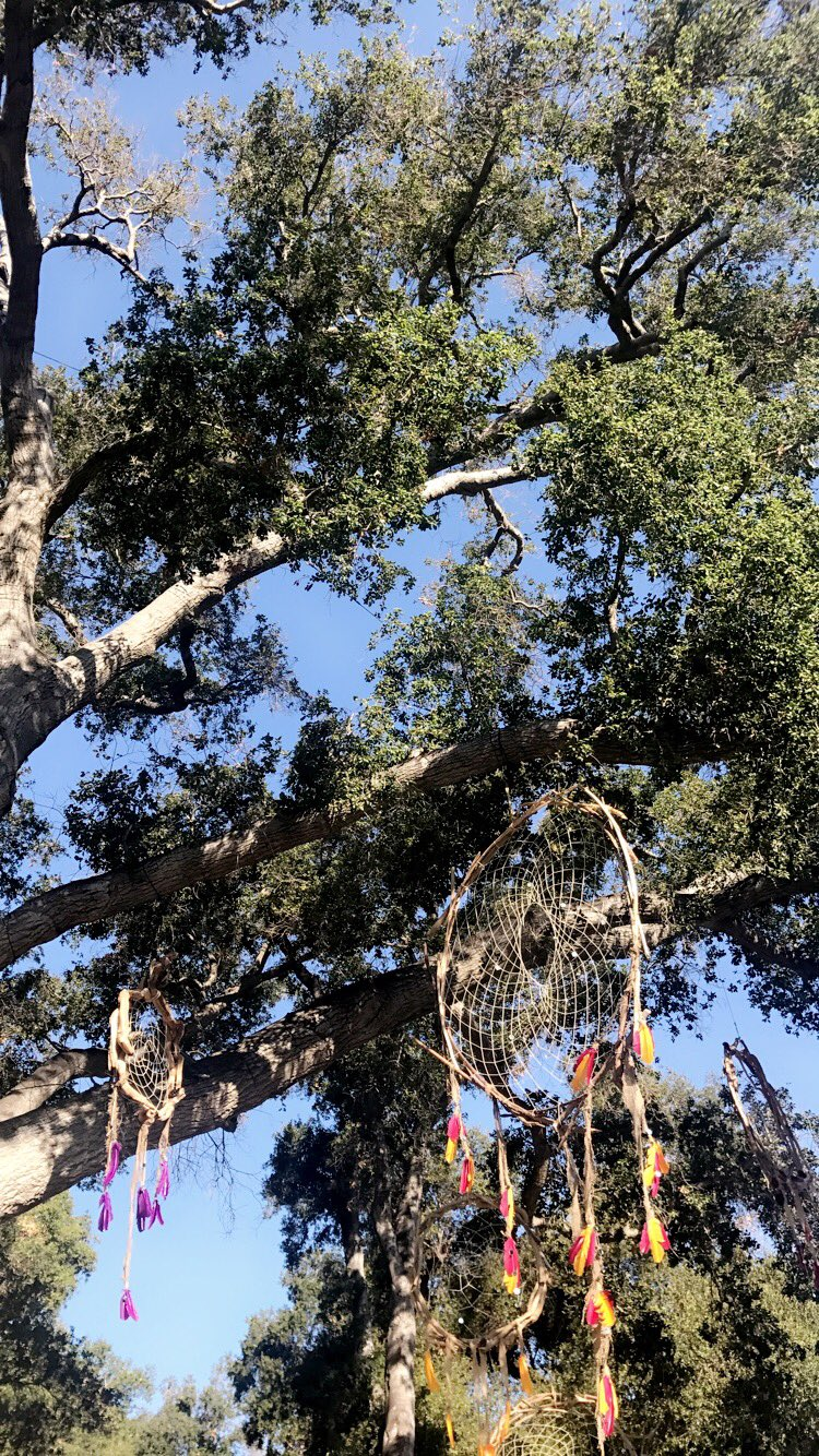 .@SummerCampMars Early Entry begins TODAY! Who's comin' to #CampMars this weekend? https://t.co/LNUSQNFNzM https://t.co/wqyQVE0QXi