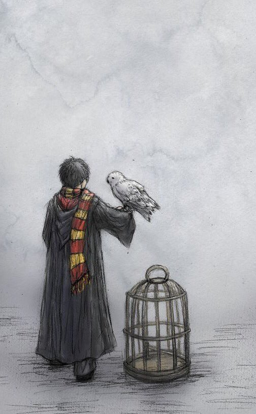 Happy birthday Harry Potter