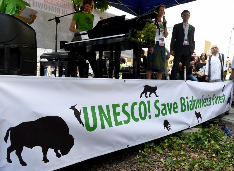 Poland vows to keep logging ancient forest despite EU court ruling