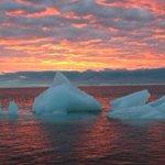 Montreal teen set to embark on environmental trip to Arctic