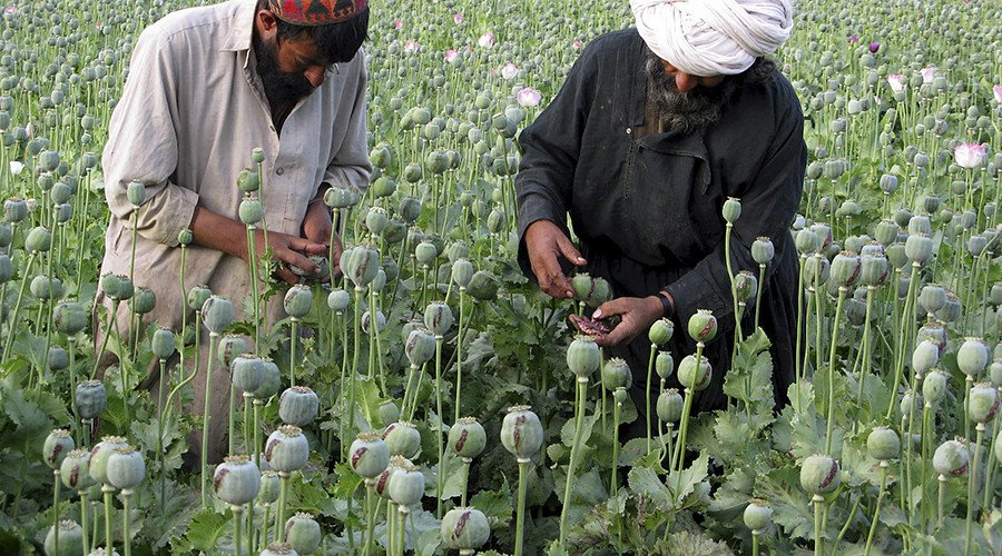 'It's US baby, and I'm not proud of it - Afghanistan is world's biggest drug dealer' (Op-Ed)