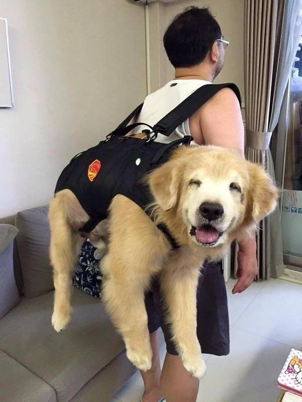 Just packing the essentials: https://t.co/oL1dUeSicw