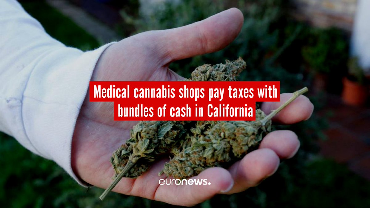 Medical cannabis shops pay taxes with bundles of cash in California