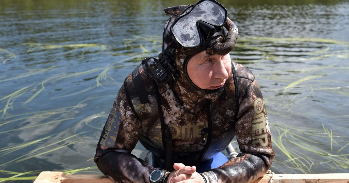 Vladimir Putin goes topless as Russian President sunbathes with shirtless Defence Minister on fishing, hunting and diving holiday