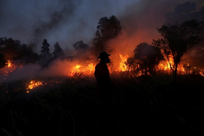 Indonesian military officer orders that forest burners be shot
