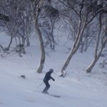 Snowy retreat: Climate change puts Australia's ski industry on a downhill slope