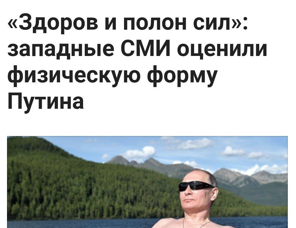 озеро, лес, Путин