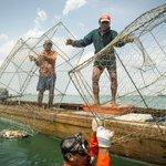 The Art of Bubufishing