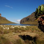 Travel: Hiking Mt Kenya along the scenic routes
