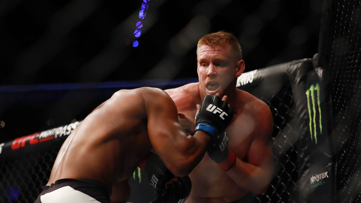 Sam Alvey calls for fight against Vitor Belfort, Vitor says 'let's fight in Vegas' https://t.co/wF3l2FAnSs #ufc #mma https://t.co/Rv1HEG3sWH