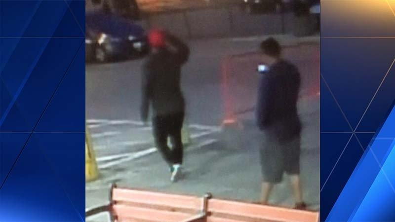 Pair sought in attempted carjacking