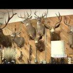 NM True TV - Sagebrush Annie's Antiques, Artesia