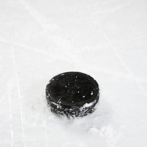 Manitoba Moose to play Iowa Wild in hockey at Scheels Arena