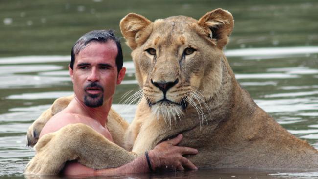Netizen Kagumi Kevin yang Mandi dengan Singa di Alam Liar https://t.co/CqGr8Rejci https://t.co/zfok09qMyR