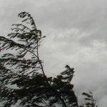 ALERT: Hazardous strong winds as dust storm grips Gauteng