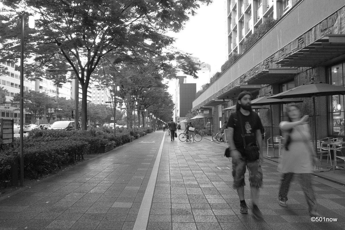 『御池通』#京都 #御池通 #写真撮ってる人と繋がりたい#写真好きな人と繋がりたい#ファインダー越しの私の世界#写真 #