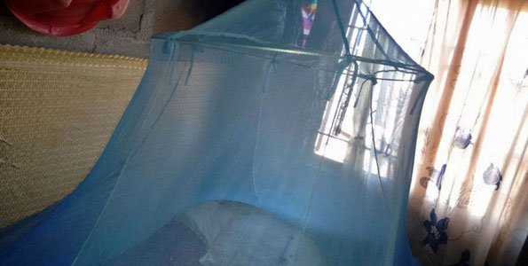 27 million mosquito nets to be distributed for malaria control