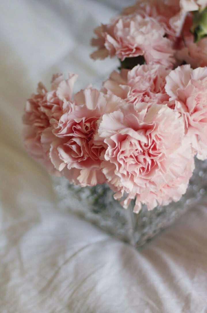 العُمر معك ألطف من الورد 🌸. https://t.co/ZJVCsTyaC1
