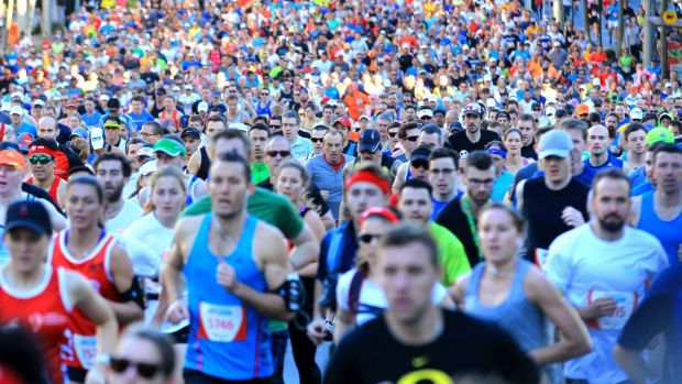 City2Surf runners greeted with warm weather as Sydney heats up