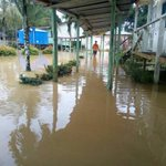 Flash floods hit Sarawak districts following heavy downpour