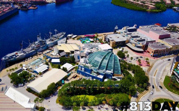 RT @floridaaquarium: From Channelside drive to Waterstreet Tampa, 813 will always be our home! #813Day #JeffVinik https://t.co/2A8wsbHXwS