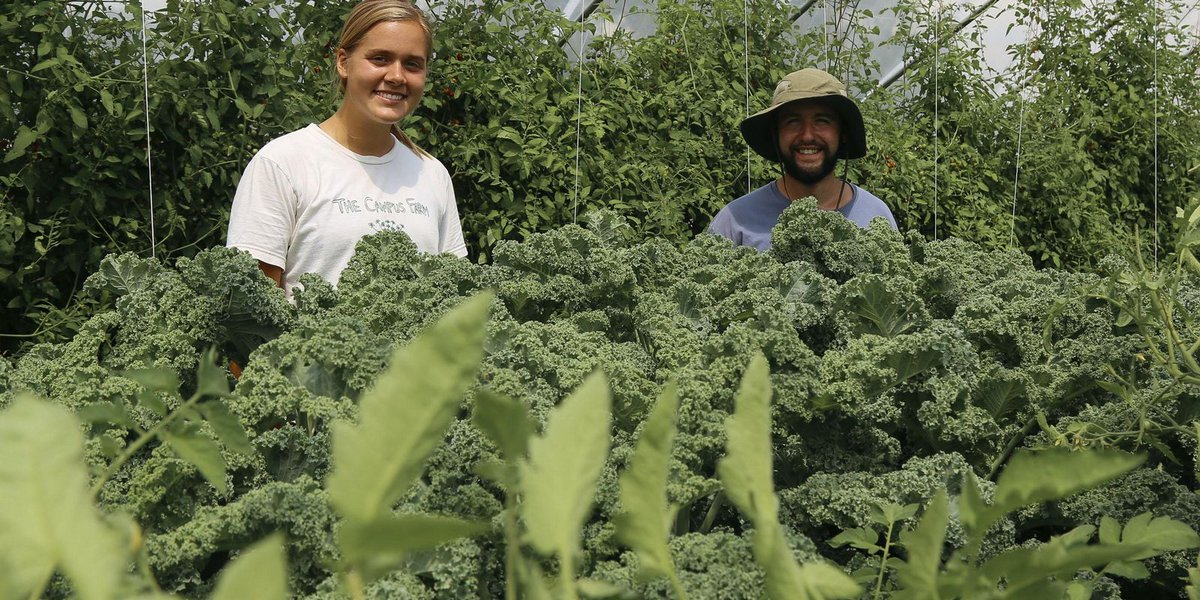 UM students grow, prepare and eat food from campus farm