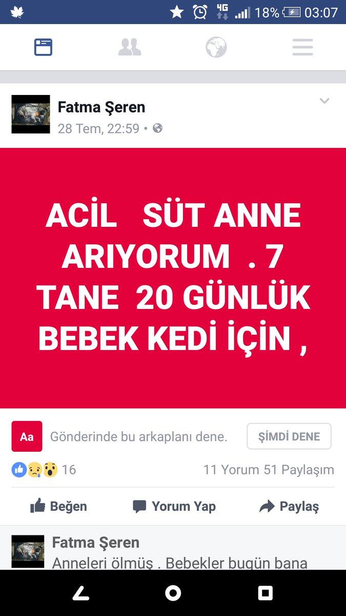 Atatürk Havalimanına