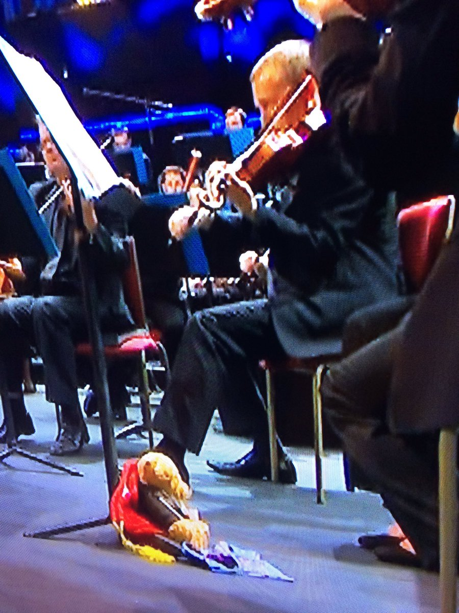 test Twitter Media - RT @bosun_thebear: ok ok , so who has managed to creep into the BBC proms tonight, who are you ? LOve Bosun xxx https://t.co/YFhDE0G1sd