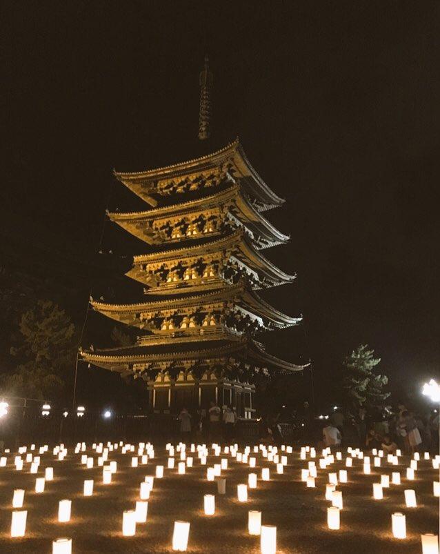 【なら燈花会】今日が最終日となりますが...#境界の彼方 にも出てきた燈花会。世界遺産に囲まれた奈良公園一面が約2万本の