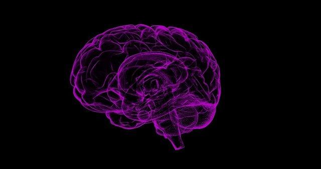 test Twitter Media - La inflamación del cerebro puede jugar un papel central en el Alzheimer. https://t.co/Q9z5Sorzpi Vía: @infosalus_com https://t.co/g5KpV8jNhk