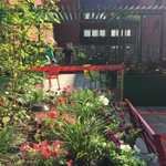 Moncton Hospital's rooftop garden to help those with mental health problems