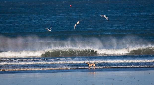 Council issues advisory notice to beach-users after Monday's stormy weather - Independent.ie