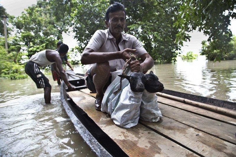 Monsoon flooding kills at least 173 across South Asia - The Mainichi