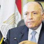 Egyptian FM holds talks with UN envoy over Libyan crisis