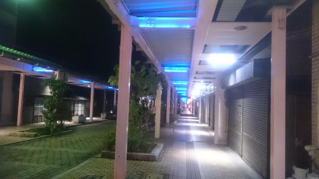 夜になると、綺麗なイルミネーションと、たまゆらの曲が流れてるこの商店街が大好き。