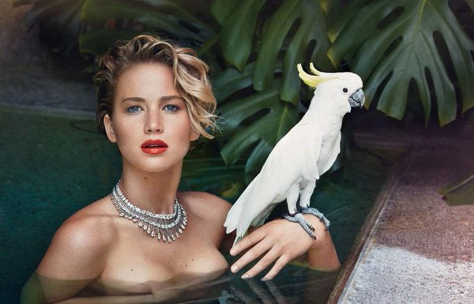 Happy Birthday! actress  Jennifer Lawrence