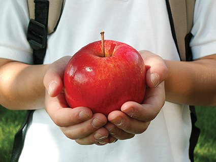 Education Ministry Offers Free Apples to Tbilisi Schoolchildren from September