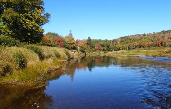 Critical habitat for endangered species along Nova Scotia river now protected
