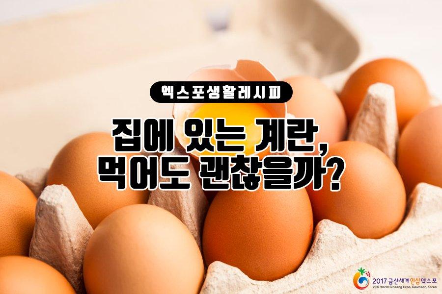집에 있는 계란 먹어도 괜찮...