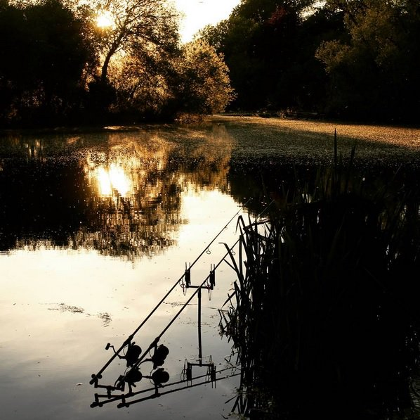 A great shot by Dave Lane!!  #carpfishing #TFGear #onthebank https://t.co/iCztCztiT7