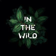 test Twitter Media - We can water down everything But our dreams In the wild We can water down anything But the light floats On And the beat :) #MadVerse #Prompt https://t.co/LFneEg2J84