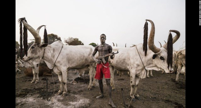 5 states resolve cattle-related conflicts