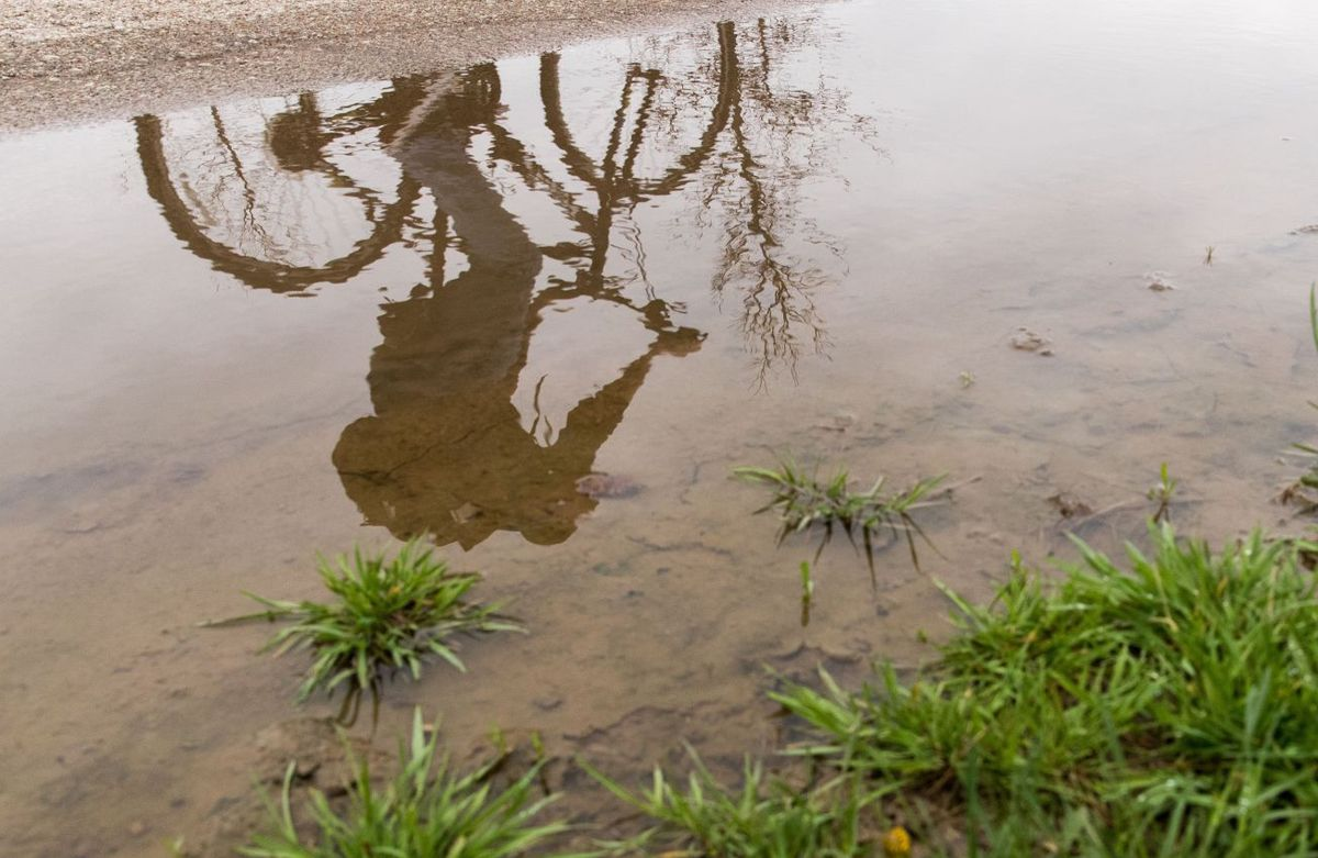 Rain expected on and off today; some areas saw heavy rain overnight