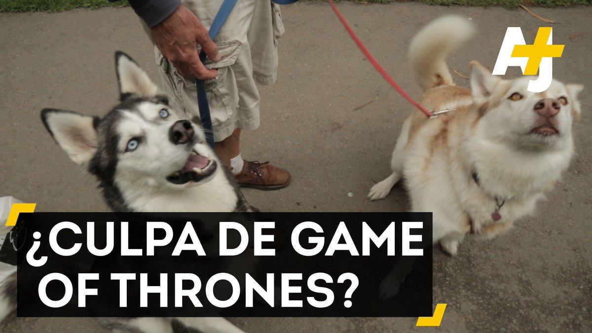 ajplusespanol game of thrones