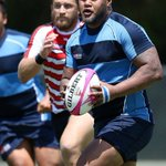 Austin Elite Rugby turning pro with expanded stadium plan