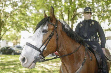 Portland Police Mounted Patrol will be gone but not forgotten (photos)